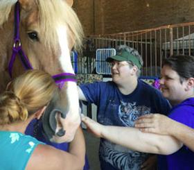 Photo of Residents petting a horse
